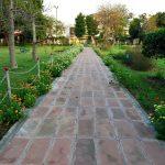 Manav Aushidiya Park